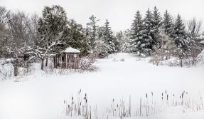 winterwonderland copy